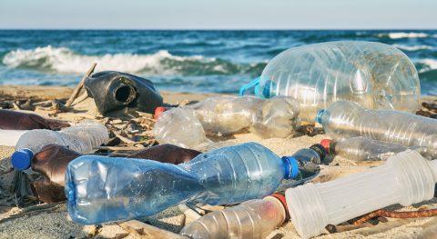 Küste gegen Plastik